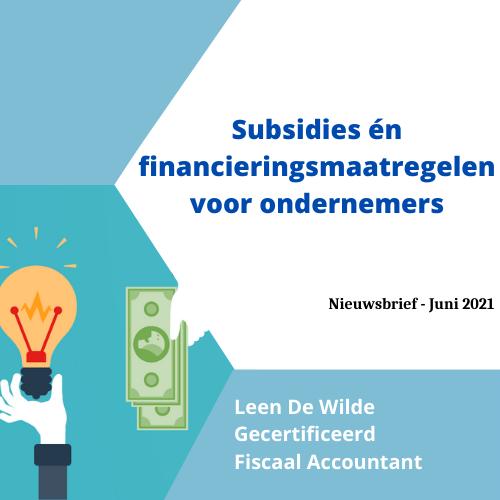 Subsidies-én-financieringsmaatregelen-voor-ondernemers-1.png